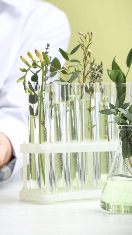 Aromas farmacia y centros medicos